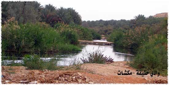 وادي حنيفة في الرياض تحول إلى منتزه رااااااااااائع mk7125_a.jpg