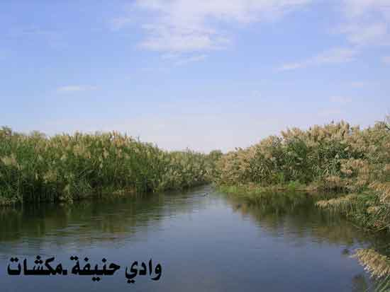 وادي حنيفة في الرياض تحول إلى منتزه رااااااااااائع mk7125_b.jpg