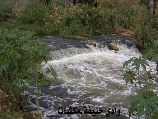 وادي حنيفة في الرياض تحول إلى منتزه رااااااااااائع mk7125_p.jpg