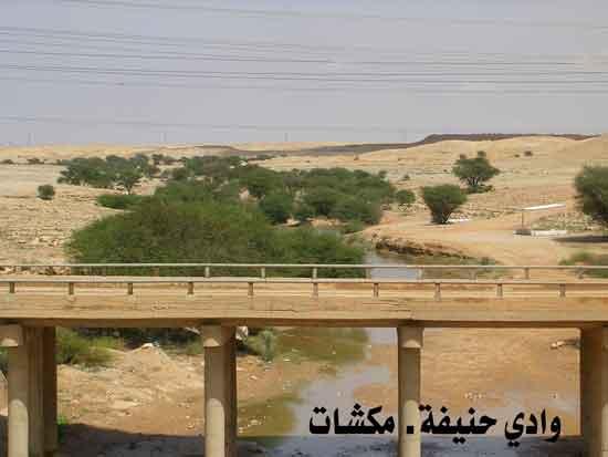 وادي حنيفة في الرياض تحول إلى منتزه رااااااااااائع mk7125_qv.jpg