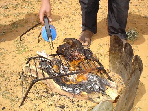 تذبح وتصلخ الخروف بالصور mk20888_k027.jpg