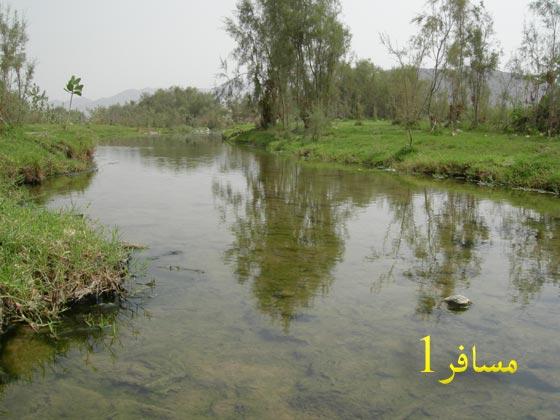 قرية غميقة العين الحارة mk19047_oiiiiii.jpg