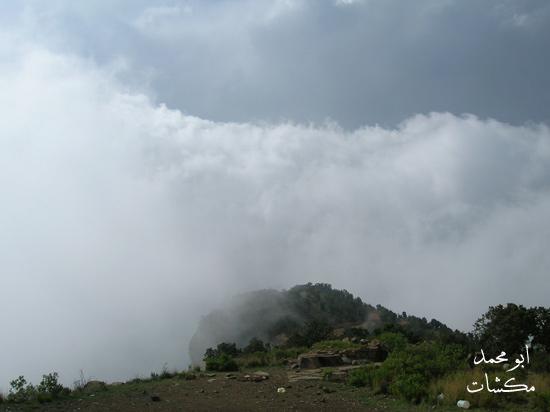 صور جبال خضراء روعة 2012