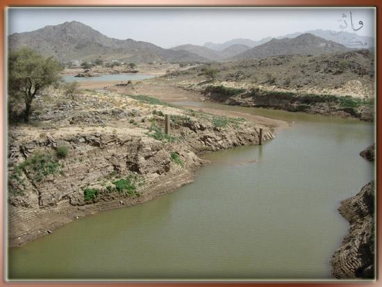 وادي ذي غزال الشفا الطائف 1 6 1426