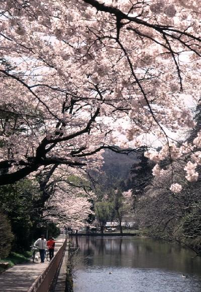 تقرير شامل عن اليابان - الاماكن السياحية فيها