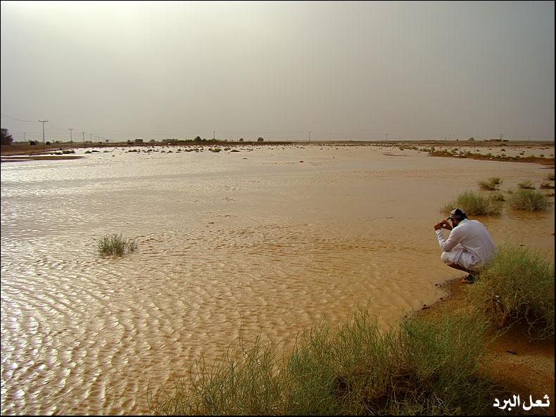 أمطار القصيم الغزيرة الجمعة