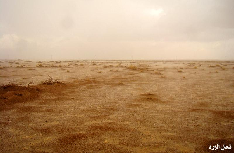 أجمل الصور أمطار القصيم 22-2