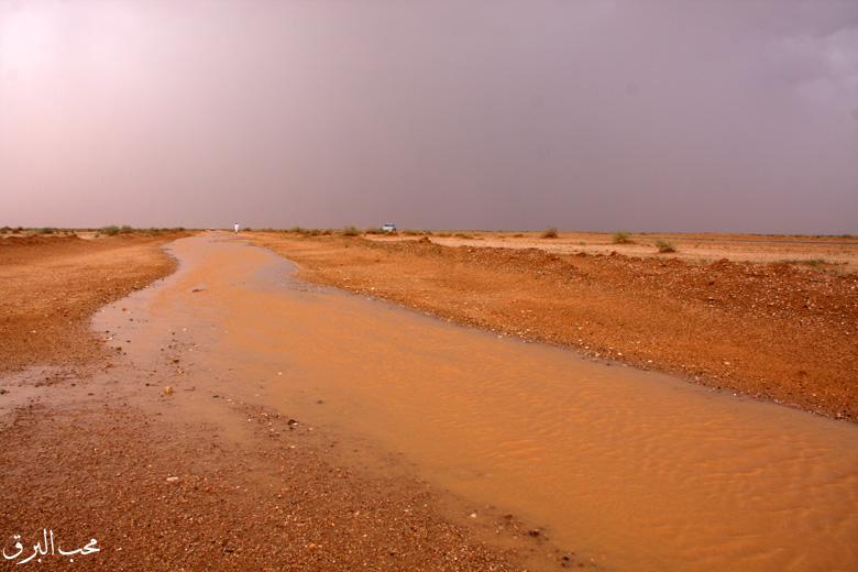 العواصف والأمطار القصيم السبت