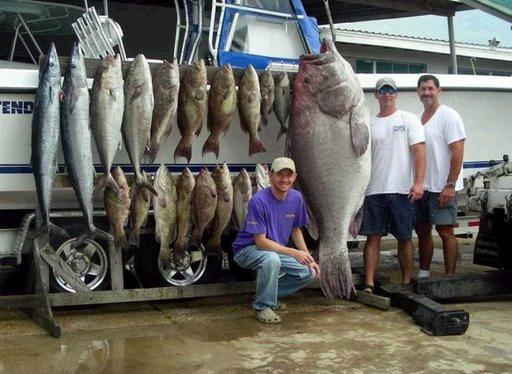 غريبة وطريفة للأسماك ..... mk31044_6.jpg