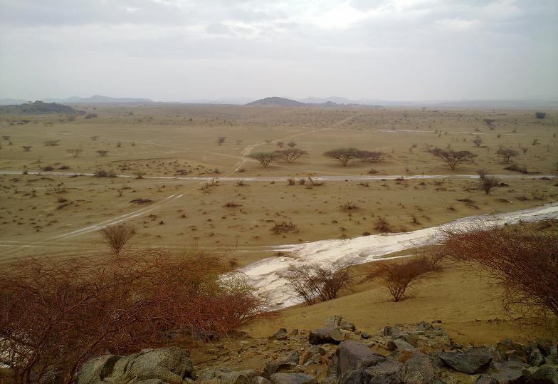 أمطـآر غزيرة وسيـوٍل تقطع الأودية صورة لسيول جنوب مكة) mk98186_11072010128.