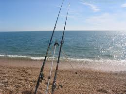 for Surf fishing virginia beach